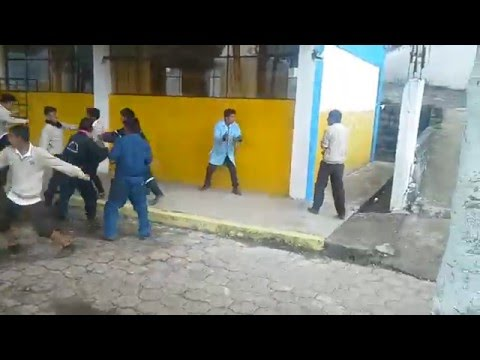 pelea latin kuins VS ñathos lokos