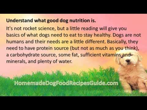 Dog Food Recipes For Diabetic Dogs