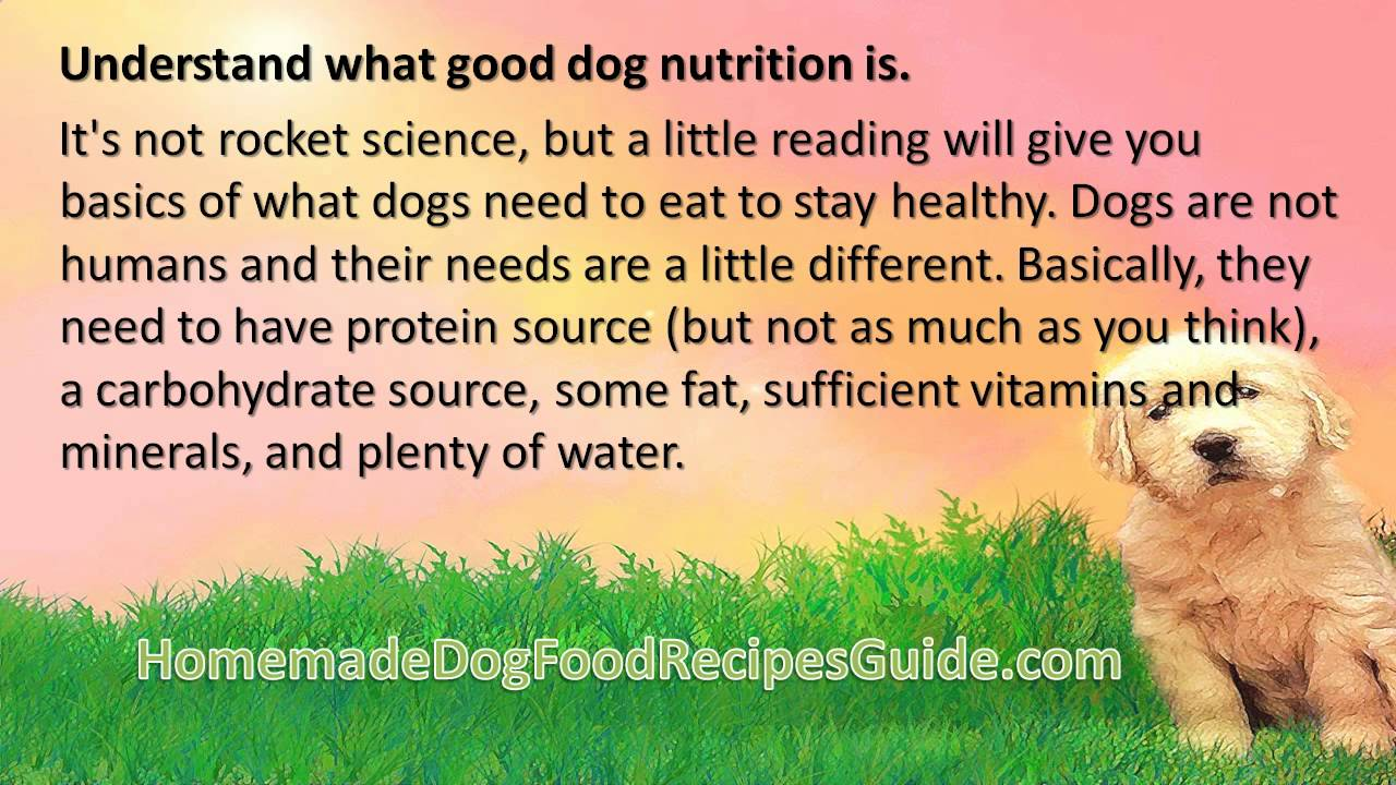 How To Make Diabetic Dog Food