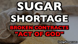 sugar-shortage-harvest-from-hell-year-without-a-summer-youtube-censorship
