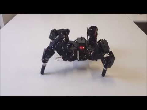 Quadruped robot 4DOF