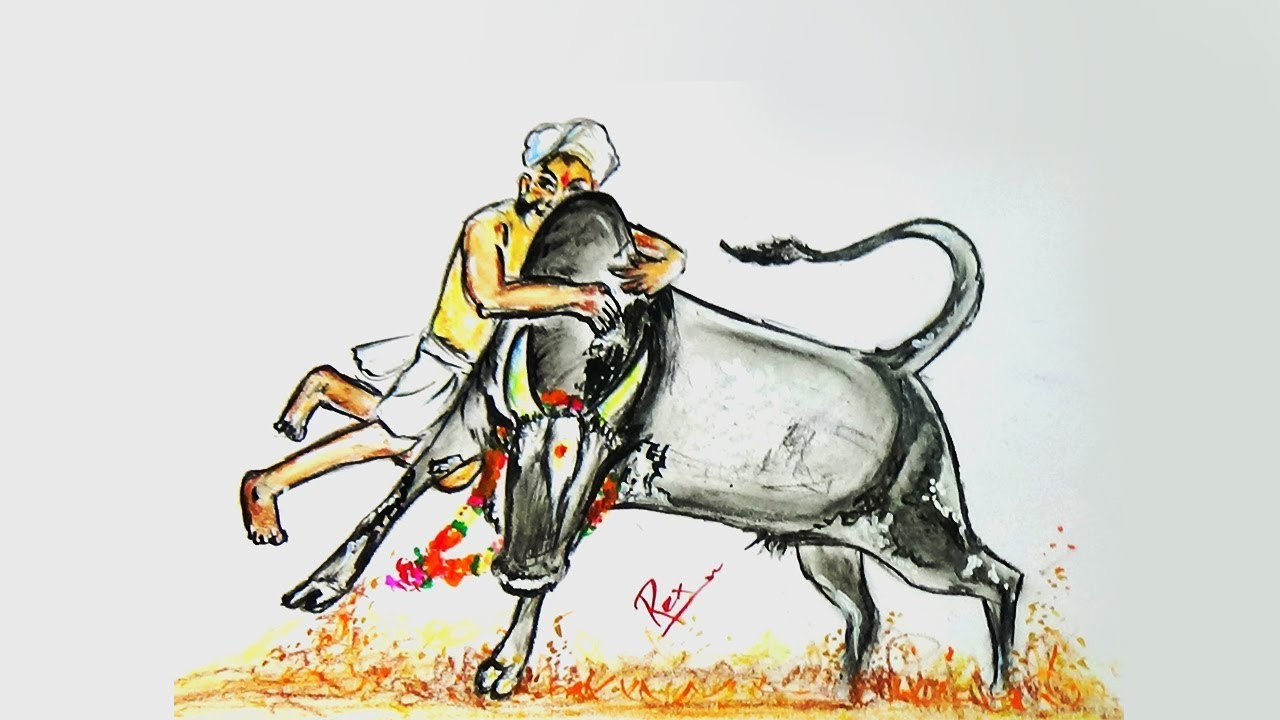 How to draw a jallikattu easy step by step easy and simple drawings rex drawing web tv