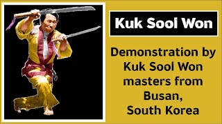 Kuk Sool Won demonstration by masters from Korea