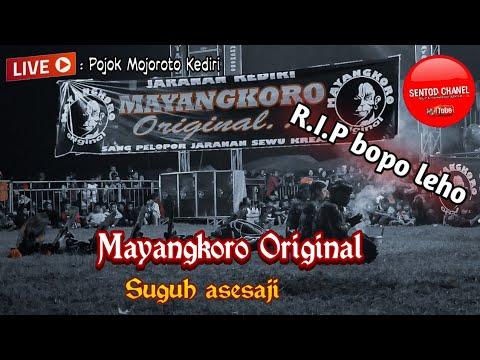 Mayangkoro original ~