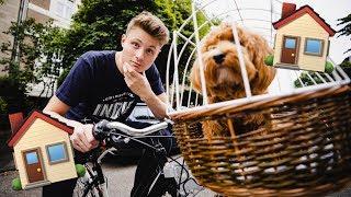 Ein Fahrrad für Alfie