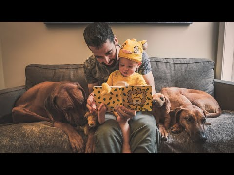 The Rhodesian Ridgeback Parenting Model