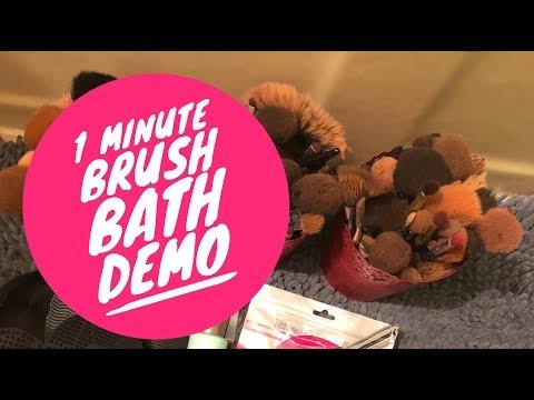1 Minute Brush Bath DEMO!  Ecotools Brush Shampoo & Esarora Mat (AMAZON)