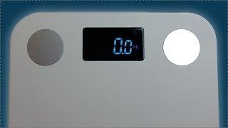 Умные весы Yunmai MINI. Обзор весов измеряющих процент жира и многое другое.