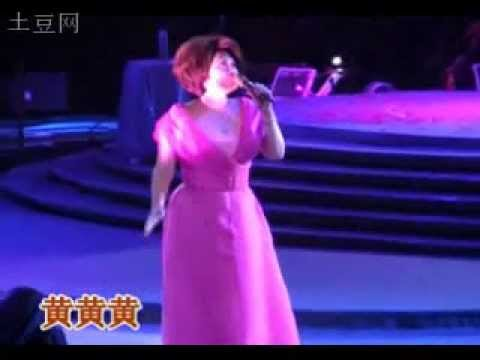 Tsai chin / Cai qin / 蔡琴 长春演唱会 (Chang Chun Concert)