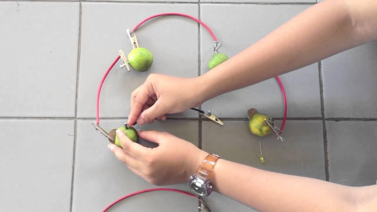 Membuat Baterai Buah Dengan Jeruk Nipis Tugas Kimia
