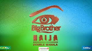 Meet the Housemates #BBNaija3