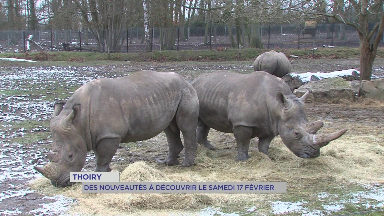 Loisirs : réouverture du zoo de Thoiry samedi 17 février