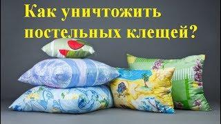 видео Постельный клещ в подушках: симптомы, как избавиться в домашних условиях?