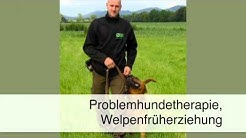 Hundeverhaltenstherapie Kappelrodeck Ronnys-Hunde-Zentrum Inh. Ronny Walther