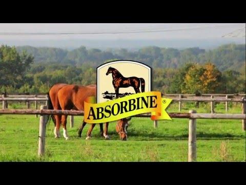ShowSheen Horse Grooming Line