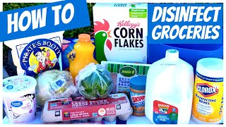 HOW TO DISINFECT GROCERIES | TIPS FOR GROCERY DELIVERY SAFETY