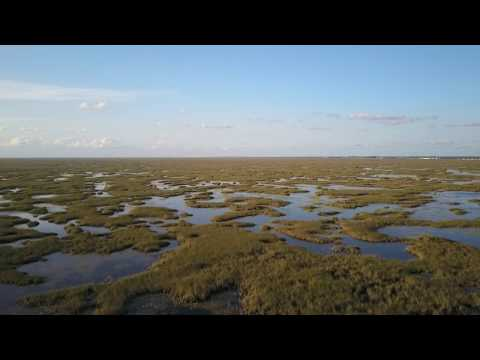 OVER THE EVERGLADES ..........MAVIC PRO DRONE FLIGHT