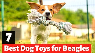 7 Best Dog Toys for Beagles and Beagle Cross Breeds