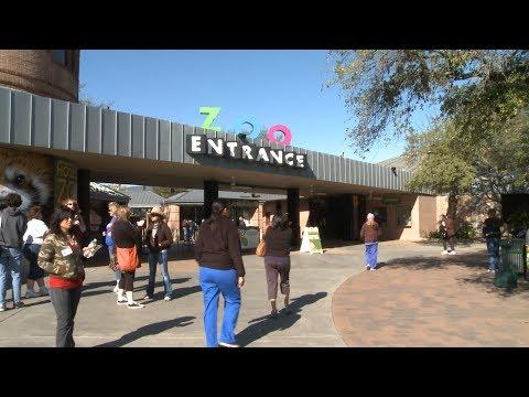 General Zoo Video