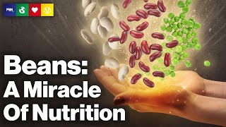 Beans - A Miracle Of Nutrition
