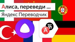 яндекс Переводчик в Алиса, Станция и Irbis A. Лучше чем Google Ассистент и Siri?