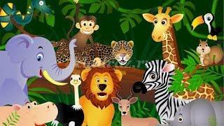 Викторина с животными, изучаем как выглядят животные и какие они издают звуки