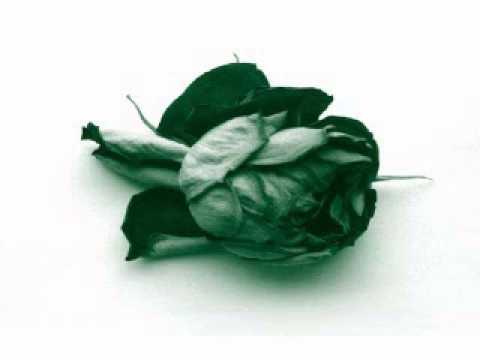 Télépopmusik -- Love Can Damage Your Health (Abicah Soul & Dennis Ferrer Remix)