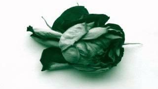 Télépopmusik -- Love Can Damage Your Health (Abicah Soul / Dennis Ferrer Remix)