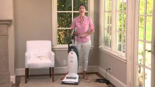Bring Home the Miele Pet Vacuum to Keep Your Home Fur-Free | Williams-Sonoma