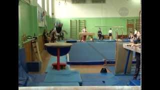 Первенство города по спортивной гимнастике