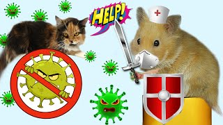 Doctor Hamter Fighting Virus COVID 19 !! Hamster Rescue Cat From Monster with Life Of Pets Hamham