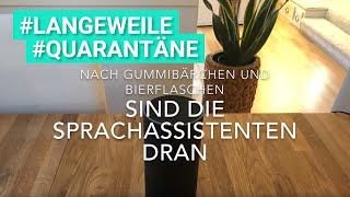Die singenden Sprachassistenten Alexa & Google Assistant: Adele - Someone like you