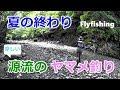 夏の終わりの源流ヤマメ釣り 2018 / フライフィッシング