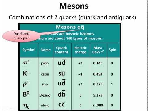 hadrons baryons mesons bosons