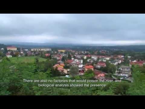 Ambasadorke o Biosfernem območju Kras / Ambassadors about the Karst Biosphere Reserve