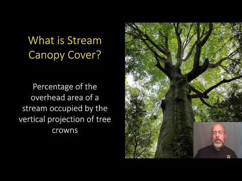 Measuring Stream Canopy Cover Using A Tube Densitometer