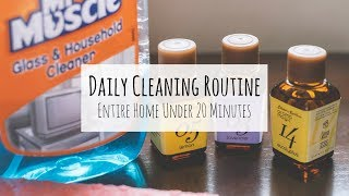 Daily Home Cleaning Routine Under 20 Minutes | Clean With Me | Indian Cleaning Routine 2018