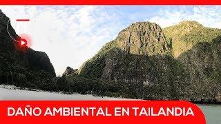 Bahía Maya Bai cierra in| El Espectador