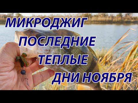 Микроджиг на канале осенью. Ловля окуня с берега.