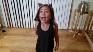 Cat Song and Dance