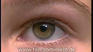 Schulfilm: DER MENSCH: SINNESORGAN AUGE (DVD / Vorschau)