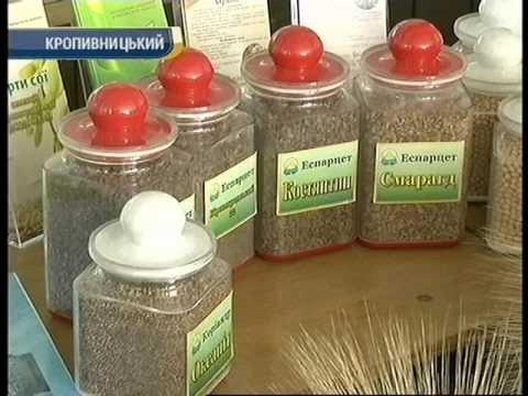 Канал Кировоград: Наукова виставка