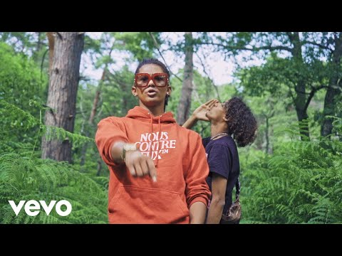 Youtube: Savage Toddy – Hood (Clip officiel) ft. Luv Resval