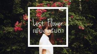 Lost Flower - เพียงพริบตา [ Official Audio ]