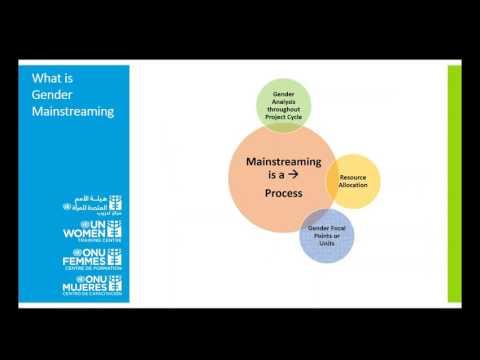 Webinar - Gender Mainstreaming: Strategies to Address Gender Inequality