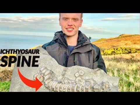Dinosaur SPINE! Hunting An Ichthyosaur