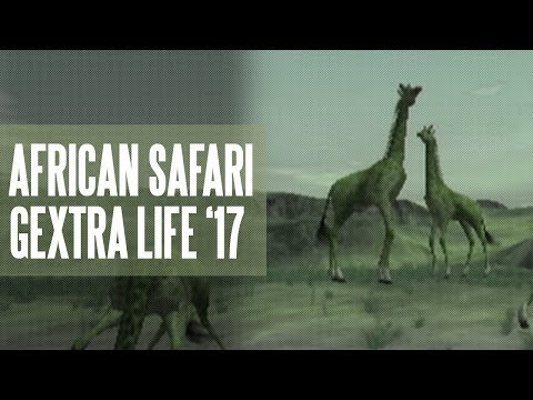 #25 - Wild Earth African Safari (Gextra Life '17)