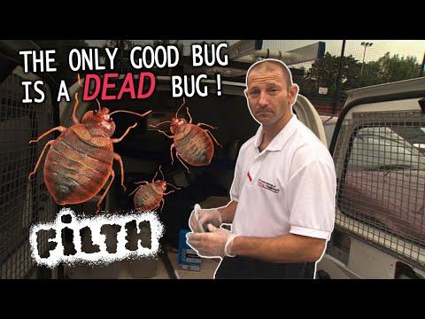Pest-Control Pete Brings