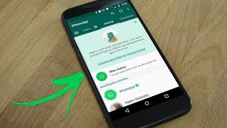 Como salvar fotos e vídeos do Status do WhatsApp