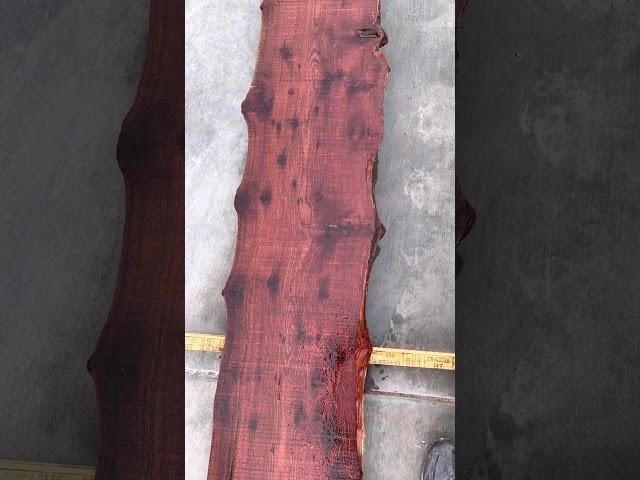 Redwood Slab #20